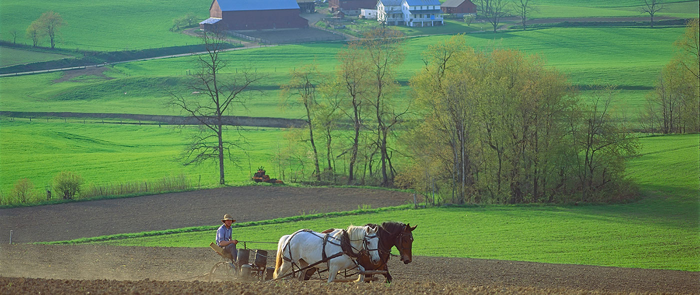 Experience Amish Furniture Experience Ohio Amish Country : 2017 - 2018 Cars Reviews