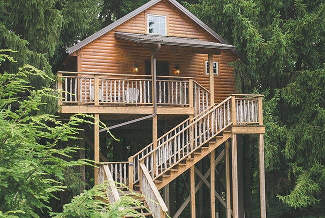 Lofty Willows Tree House overview