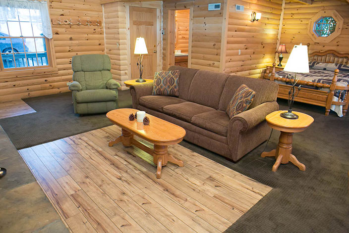 Owl's Perch Cabin Rental in Berlin, Ohio - Living Room