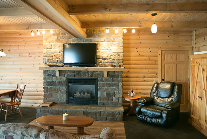 Cozy Chair, Fireplace & Living Area in a Cabin in Amish Country