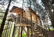 Whispering Pines Treehouse Berlin Ohio Outside View