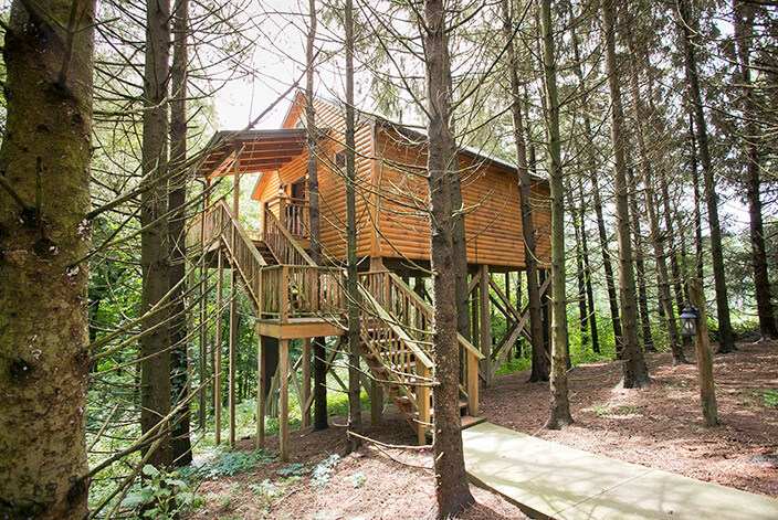 Whispering Pines Tree House exterior