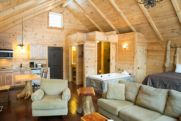 Tree House Cabin in Amish Country - Living Room - Berlin OH