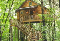 Wild Cherry Tree House exterior
