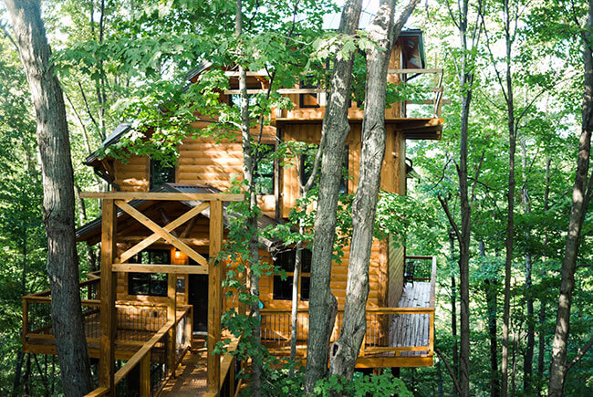 Treehouse #3 exterior view