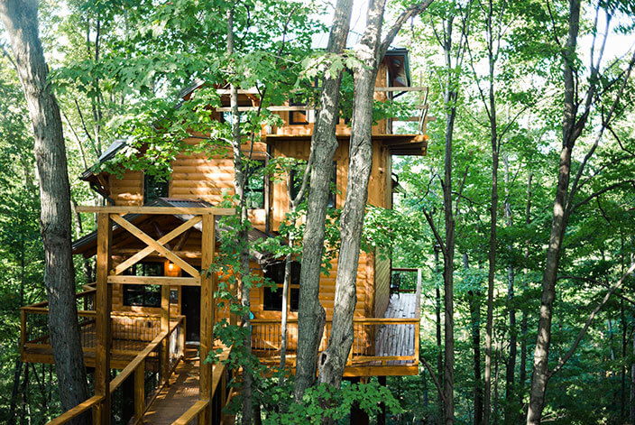 Treehouse #3