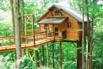 Treehouse #5 exterior view