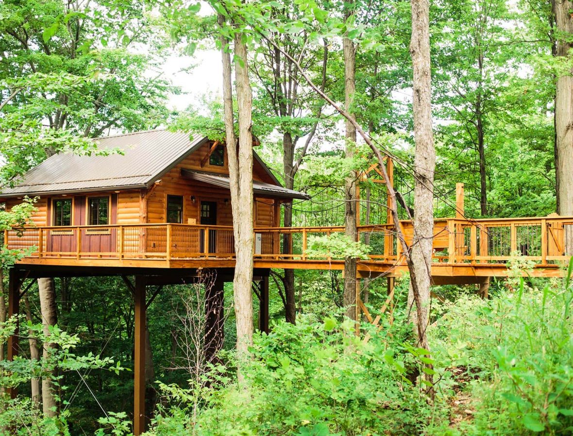 Alternate view of Exterior of Tree House #5