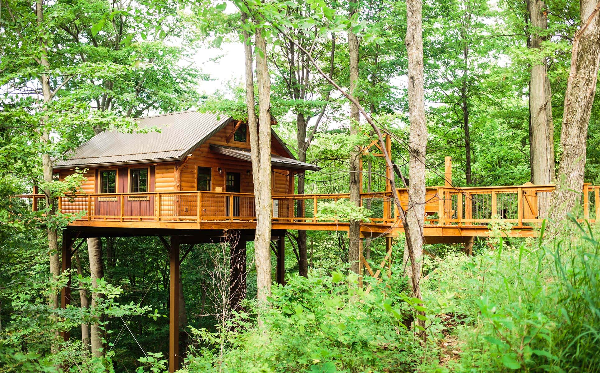 Alternate view of Exterior of Treehouse #5
