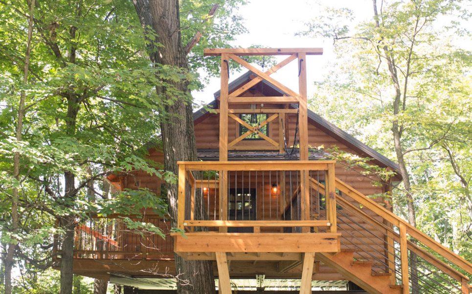 Exterior Tree House #6