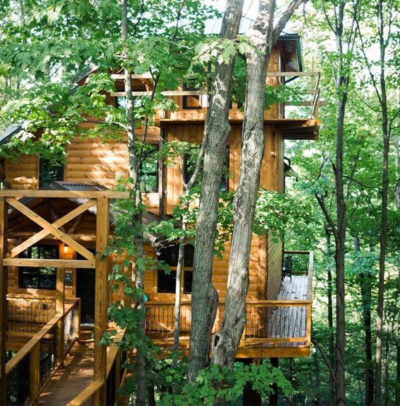 Exterior of Treehouse #3