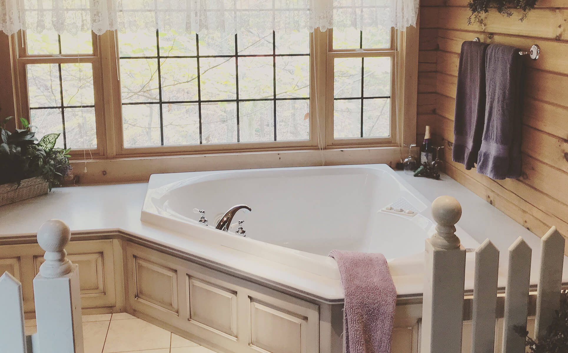 Wild Rose Cabin jetted tub